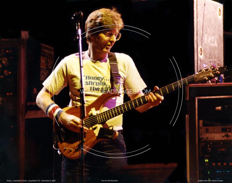 Phil Lesh - December 9, 1988